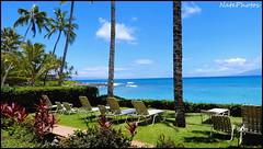 Hi Home(1) (NatePhotos) Tags: road sunset sea hawaii bay waterfall rainbow cows turtle maui hana jungle waterfalls kapalua rooster eel napili 2016 natephotos