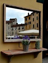 Lucca allo specchio (Irene Grassi (sun sand & sea)) Tags: italy strange reflections mirror italia lucca tuscany unusual piazza toscana riflessi strano specchio stranezze facciate piazzadellanfiteatro piazzeitaliane lesorelle