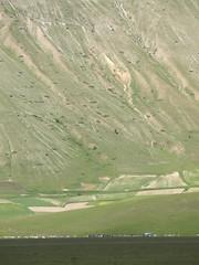 Grazing (Fraser P) Tags: flowers italy mountains primavera landscape spring umbria castelluccio pianogrande fiorita