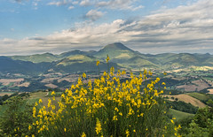 San Vicino (Francesco Ganzetti) Tags: flowers slr nature beautiful june yellow clouds landscape focus magic olympus 25mm