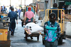 IMG_5861 (tsaaby) Tags: japan fishmarket fisk fiskemarked tmfstudietur