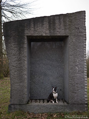 Hundehütte 01.03.2012