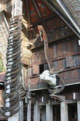 Tana Toraja, Ke'te Kesu, tongkonan (Arian Zwegers) Tags: tanatoraja ketekesu sulawesi tongkonan buffalohorns buffalo horns indonesia buffaloes traditional house woodcarvings carvings toraja indigenous southsulawesi 2011