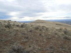Yakima skyline view