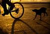 A sunrise chase (samthe8th) Tags: morocco donthate d700 flickrchallengewinner herowinner ultraherowinner thepinnaclehof kanchenjungachallengewinner tphofweek151