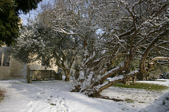 WINTERS GRAVEYARD (Adam Swaine) Tags: county uk trees winter england snow english church beautiful graveyard rural canon landscape countryside village britain villages east gravestones eastanglia 2012 snowscene counties snowscenes naturelovers westdeeping 24105mm thisphotorocks adamswaine mostbeautifulpicturesmbppictures wwwadamswainecouk snowyfeb2012