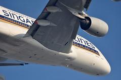 [11:46] SQ0317 LHR-SIN. (A380spotter) Tags: london heathrow belly airbus a380 departure sq takeoff 800 sia lhr singaporeairlines egll climbout 9vska 09r msn0003 lhrsin runway09r sq0317