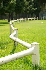 Zig Zag (Lauren Barkume) Tags: africa park trees white grass fence southafrica photowalk artdeco curve zigzag johannesburg joburg 2012 gauteng johanesburg eastrand photowalkers laurenbarkume gettyimagesmeandafrica1