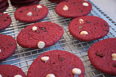 red velvet cookies (saucy dragonfly) Tags: cookies recipe baking blog gift saskatoon present treat cakemix redvelvet whitechocolatechips dropcookies saucyssprinkles sashalibby