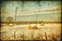 As in Days of Olde...... (LynnF1024) Tags: winter snow cold texture wisconsin rural photoshop vintage landscape countryside aperture january farmland haybales nikond90 ashlandcounty afsdxzoomnikkor1855mmf3556gedii lynnf1024 aperturecolorefexpro highbridgewi
