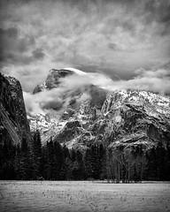 Fog and Half Dome, Yosemite National Park (4 Corners Photo) Tags: california winter sky blackandwhite mist snow mountains tree fog clouds forest landscape unitedstates yosemite halfdome northamerica yosemitenationalpark geology sierranevadamountains mariposacounty ahwahneemeadow canoneos50d