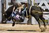 Side saddle bull ride (EssjayNZ) Tags: wow cowboy tag2 tag1 rodeo essjaynz bullriding 2012
