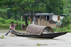 K1_2001 (bandashing) Tags: trees england house fish water rain river manchester rising fisherman stream fishermen flood row monsoon bil plains sylhet bangladesh oars waterhyacinths kushiara balagonj bandashing rowrowrowyourboatgentleydownthestream