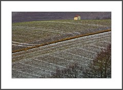 Felder  (fields) (alfred.hausberger) Tags: bavaria rott felder lower niederbayern strukturen rottal updatecollection winterfelder