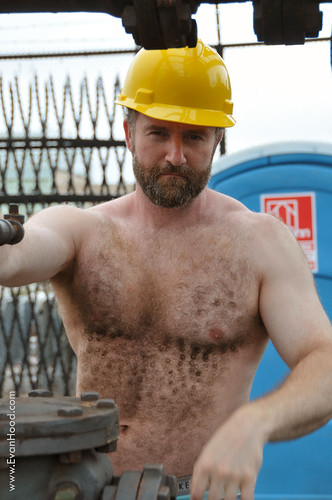 construction Hairy bears