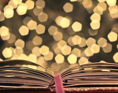 Let me check my Diary..... (Serena178) Tags: book bokeh diary ribbon date thursday