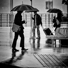 Raindrops keep fallin' on my shoes (. Jianwei .) Tags: light shadow white canada black wet rain silhouette vancouver contrast umbrella square three chair shoes downtown mood place walk 85mm atmosphere luggage raindrops 365 剪影 雨 伞 a500 jianwei 雨伞 kemily