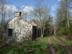 Roofless. (Kingfisher 24) Tags: trees track cottage perthshire ruin viaduct