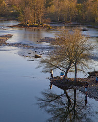 life is a river (** RCB **) Tags: trees winter water river march fishing h2o reflect sacramento americanriver rioamericano