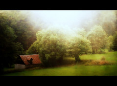 early morning (in the misty mountains) (macfred64) Tags: barn rural dawn grainy pastoral redbarn lightbeams textured daybreak mistymountains earlymorninglight magicunicornverybest