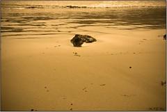 Arena dorada (Art.Mary) Tags: sea espaa naturaleza mer beach nature canon golden mar andaluca spain playa dor espagne plage almera cabodegata dorado genoveses
