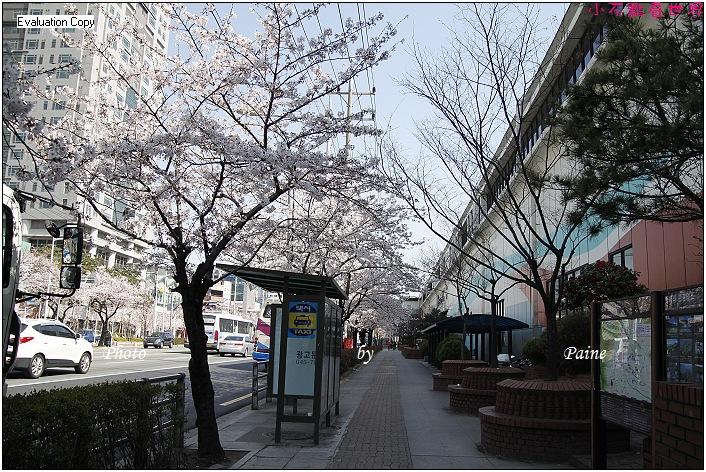 釜山溫泉站 (4).JPG