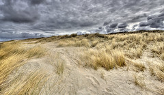"""Dune • <a style=""""font-size:0.8em;"""" href=""""http://www.flickr.com/photos/45090765@N05/7074156275/"""" target=""""_blank"""">View on Flickr</a>"""