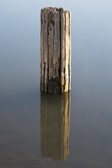 Pole in Water Reflection (llphoto168) Tags: new light sky color art me nature beautiful weather brad clouds swimming landscape outdoors photography photo lawrence nice nikon mine gallery day image wildlife great picture bugs cover missouri getty now vikings today invite recent thankfull d7100 llphoto llphoto168