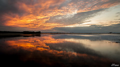 Atardece en la marjal (E.Cano) Tags: sunset sky lake water clouds landscape lago atardecer dawn agua warm paisaje cielo nubes calido