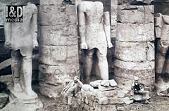 archeology (Internet & Digital) Tags: cats ancient god hawk victorian egypt ibis horus ritual mummy isis sacrifice osirus ancientegypt offerings mummified thoth mummifiedcats