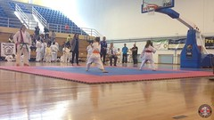 stefanou_15_5_2016_knockdown_3418