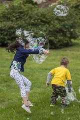 2016-05-22 DeCordova 029 (consolecadet) Tags: museum kids outdoors rainbow massachusetts bubbles blowing artmuseum sculpturepark lincolnma poppingbubbles decordovamusuem