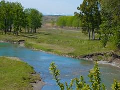 2016 May 15 Glenbow Ranch Provincial Park hike -  River, trail and Rockies (benlarhome) Tags: canada calgary trek walk hike alberta bowriver glenbowranch