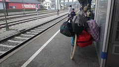 Carrying luggage on a bicycle at a railway station (hugovk) Tags: cameraphone station bicycle germany nokia spring railway luggage april hvk konstanz constance carrying badenwurttemberg carlzeiss 2016 808 kevät geo:country=germany hugovk camera:make=nokia pureview exif:flash=offdidnotfire exif:aperture=24 nokia808pureview exif:orientation=horizontalnormal exif:exposure=1176 camera:model=808pureview uploaded:by=email exif:exposurebias=0 exif:focallength=80mm exif:isospeed=50 geo:county=constance geo:locality=konstanz geo:region=badenwurttemberg carryingluggageonabicycleatarailwaystation meta:exif=1463834506
