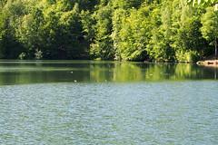 a felsőbányai Bódi-tó / the Bodi lake (debreczeniemoke) Tags: lake spring peak hike tó tavasz gutin túra feketehegy bodilake laculbodi csúcs bóditó mogoşa gutinhegység munţiigutâi munţiigutin olympusem5 gutinmountains afelsőbányaibóditó laculbodidinbaiasprie