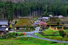(DSC_5883) (nans0410(busy)) Tags: building japan outdoors spring kyoto village   sakura kansai  kitamura   nantan  kayabukinosato  kinkiarea