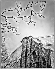 Brooklyn Bridge (Dennis Herzog) Tags: nyc newyorkcity bridge urban blackandwhite bw ny newyork monochrome architecture brooklyn blackwhite manhattan flag bridges americanflag flags brooklynbridge usflag newyorkbridges iconicarchitecture mygearandme iconicnewyorkarchitecture