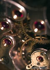 Gearing Up (DMeadows) Tags: macro metal screws spring teeth machinery plates cogs cog mechanism internal workings reversingring canonfd28mm davidmeadows dmeadows yahoo:yourpictures=yourbestphotoof2012 yahoo:yourpictures=time2013