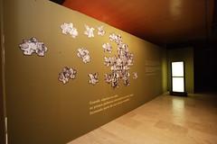 Fundación Caja Rioja_4