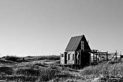 rancho 5 / s que ests ah (polameji) Tags: wood bw house beach canon uruguay casa seaside madera dunes pueblo cottage playa bn polarizer rancho techo dunas cabaa abode juncos cabopolonio rocha dwelling polonio polarizador polameji