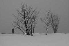 (Hk) Tags: winter blackandwhite bw mist snow rain fog canon suomi finland 50mm grey helsinki 50mmf18 40d bwartaward