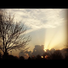 Good morning Beautiful :)