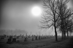 The Living, and The Dead (lynn.h.armstrong) Tags: camera morning trees bw sun white mist ontario canada black art graveyard grass silhouette st fog silver lens geotagged photography photo lawrence interesting mac aperture nikon long flickr zoom south cemetary union wb images graves lynn h valley getty pro nik nikkor tombstones armstrong gravestones stormont vr licence afs request dx sault attribution ingleside 2011 ifed 18200mm f3556 noderivs vrii efex d7000 lynnharmstrong