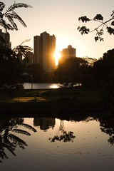 2.878 - Fim de tarde (Ricardo Cosmo) Tags: sunset sun lake reflection building sol water paran gua brasil lago prdosol prdio reflexo londrina igap palhano ricardocosmo mzuiko olympusepl1