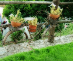 Bicicleta (Elena__bcn8) Tags: espaa bicicleta bici len orton palacio bierzo canedo palaciodecanedo flickraward efectoorton flickraward