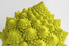 Roman Cauli (Andy 1999) Tags: fractal veg focusstack romanescobroccoli romancauliflower zerenestacker