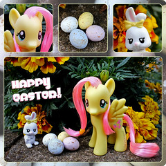 Happy Easter everypony! (pukunui81) Tags: rabbit bunny angel canon easter square g4 pegasus pony eggs hasbro mylittlepony eastereggs happyeaster 550d fluttershy t2i canoneos550d friendshipismagic