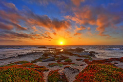 Pacific Grove Sunset (Dave Toussaint (www.photographersnature.com)) Tags: ocean california ca travel sunset shadow red sea vacation portrait sky orange usa sun plant ice nature silhouette june photoshop canon landscape coast photo back monterey interestingness interesting sand day skies photographer cs2 cloudy shoreline picture explore driftwood adobe shore coastline lit pacificgrove northern hdr centralcalifornia adjust infocus 2011 denoise the4elements 60d abigfave topazlabs photographersnaturecom davetoussaint photoengine oloneo flickrstruereflection1 flickrstruereflection2 flickrstruereflection3