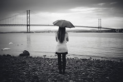 . (joannablu kitchener) Tags: bridge girl umbrella 50mm scotland nikon swans queensferry d700 kitchenerphotography