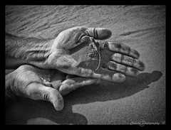 Nam Lizard (Chantel Burmeister) Tags: blackandwhite white black nature animal animals sand hands hand reptile lizard namibia reptiles sossusvlei